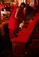 Buddhist Monk pouring tea for fellow monks during a chanting ceremony, Sikkim, India