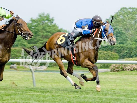 El Commodore winning at Delaware Park on 5/26/12