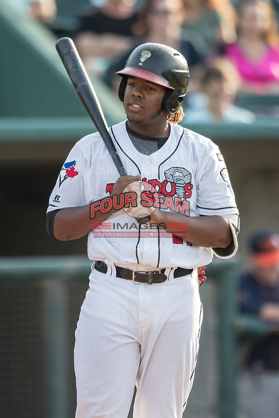 Lansing Lugnuts designated hitter Vladimir Guerrero Jr. (27) at the plate during the Midwest League baseball game against the Bowling Green Hot Rods on June 29, 2017 at Cooley Law School Stadium in Lansing, Michigan. Bowling Green defeated Lansing 11-9 in 10 innings. (Andrew Woolley/Four Seam Images)