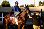 OCT 26: Eddie Haskell at Santa Anita Park in Arcadia, California on Oct 26, 2019. Evers/Eclipse Sportswire/Breeders' Cup