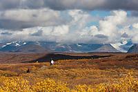 Hikers on MaClaren summit trail to MaClaren Glacier in the Alaska Range mountains,  Interior, Alaska.