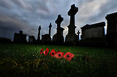 Poppies add Remembrance to the Glasgow Necropolis where many of the graves carry memorials to military personnel killed in action in conflicts dating back to the 19th century - picture by Donald MacLeod - mobile 07702 319 738 - clanmacleod@btinternet.com - www.donald-macleod.com