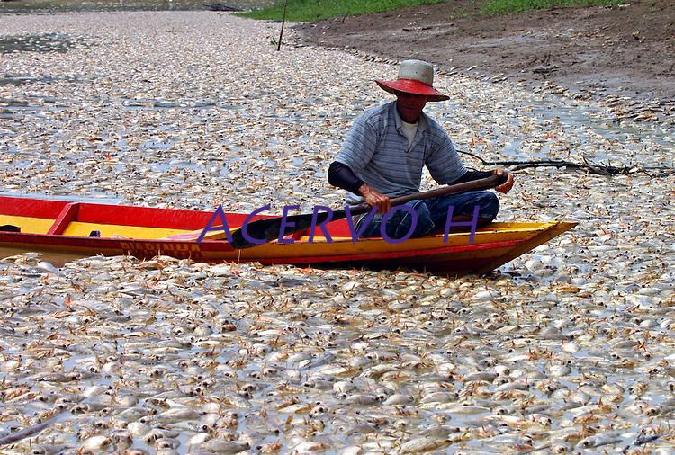 O pescador Elson Sena de OLiveira passa em sua canoa em meio a peixes mortos no lago dos Reis.<br /> Careiro, Amazonas, Brasil.<br /> 18/10/2005<br /> Foto AntÙnio Lima/Interfoto