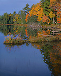 Vilas County, WI<br /> Morning sun lighting the autumn foloiage of the deciduous trees on the shoreline of Little Bass Lake in North Highland American Legion State Forest