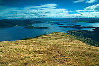 Loch Lomond from Beinn Dubh, Loch Lomond and the Trossachs National Park