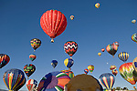 Balloons rise during the 25th annual Great Reno Balloon Races Saturday, September 9, 2006.