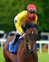 Goodwood Rebel ridden by Harry Bentley goes down to the star of The First Carlton Novice Auction Stakes Div 1 during Evening Racing at Salisbury Racecourse on 11th June 2019