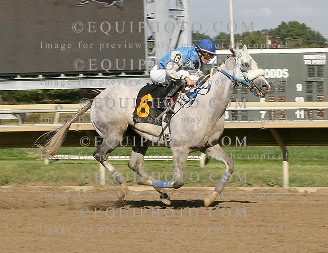 Ricky Tick #6 with Roberto Rosado riding won the $50,000 Silver Goblin Starter Handicap at Parx Racing in Bensalem, Pennsylvania October 12, 2013.  Photo By Matthew Donohue