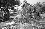 Shatila, the &quot;gipsy camp&quot; below the Sports city of Beirut. Children play with a seesaw built with scrap material on a garbage dump.<br />  <br /> Camp des Nourieh (Tsiganes). Les enfants s'amusent avec une balan&ccedil;oire construite sur les ordures avec du mat&eacute;riel de r&eacute;cup&eacute;ration.