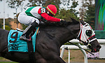October 26, 2019: Buy Land and See, ridden by Irad Ortiz Jr., wins the 2019 running of the Awad S. at Belmont Park in Elmont, NY. Sophie Shore/ESW/CSM