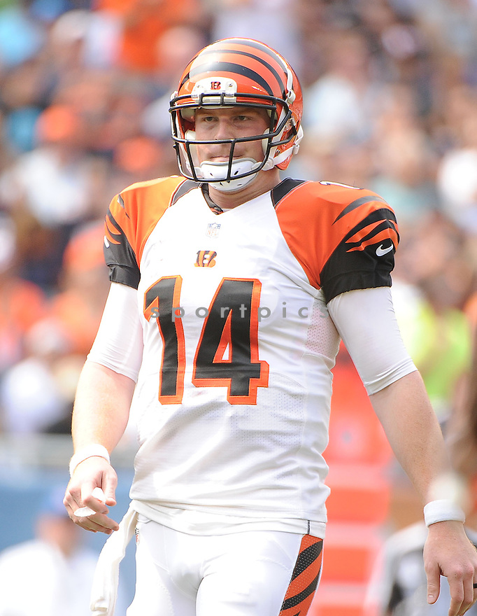 Cincinnati Bengals Andy Dalton (14) during a game against the Chicago Bears on September 8, 2013 at Soldier Field in Chicago, IL. The Bears beat the Bengals 24-21.