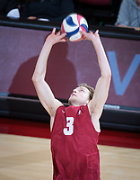 STANFORD, CA - March 14, 2019: Paul Bischoff at Maples Pavilion. The #8 Stanford Cardinal fell to the #6 Pepperdine Waves 3-0.
