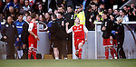 Stirling Albion cxelebrate at the final whistle and Daly McSorley punches the air