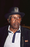 Bo Diddley by Jonathan Green Celebrity Photography USA