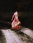 A woman in a pink flowing dress, holding a shawl & crossing a path in the wood, on a summer afternoon/evening.