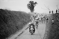 peloton<br /> <br /> Paris-Roubaix 2014