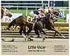 Little Vicar winning thru DQ of Riproarious at Delaware Park on 6/28/06