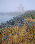 Coos County, OR<br /> Coquille River Lighthouse (1896) in fog at Bullards Beach State Park, Bandon