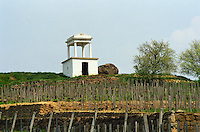 "The Disznoko winery in Tokaj: the vineyard, a watch tower and the rock that has given its name to the estate (Disznoko means ""pig's head"" and the rock supposedly looks like one). The Disznók? winery is owned by AXA Millesimes, a French insurance company. Disznoko means pig's head since a big rock in the vineyard supposedly looks like that. The new winery is impressive and a vast amount of money has been invested. Credit Per Karlsson BKWine.com"