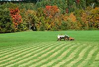 New England farmer raking hay into rows, Vermont