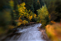 Rick Wilson Photo--9/24/07--A mountain stream runs through trees with leaves changing color in an Autumn scenes of mountains, aspen trees, pine trees, leaves changing color, streams, wildlife, clouds, snow and fog in and around Rocky Mountain National Park in central Colorado in late September.