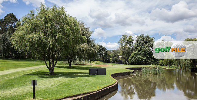 Pond defending the 11th green on the East Course, Royal Johannesburg &amp; Kensington Golf Club, Gauteng, Johannesburg, South Africa.  13/01/2016. Picture: Golffile | David Lloyd<br /> <br /> All photos usage must carry mandatory copyright credit (&copy; Golffile | David Lloyd)