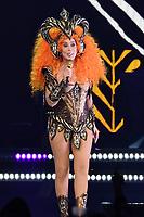 JAN 19 Cher In Concert-