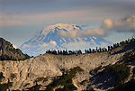 Unicorn Peak, as seen from  Mount Rainier National Park, Paradise Visitors Center.