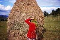 ROMANIA / Maramures / Valeni / September 2003..Maria Nemes, 20, taking a break from the potato harvest...© Davin Ellicson / Anzenberger