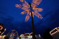 An electric palm tree lights up the sky at dusk during the SEMO District Fair on Wednesday, Sept. 15, 2010 in Cape Girardeau, Missouri.