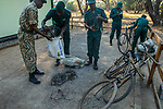 Anti-poaching scouts with confiscated bicycles and snares, used by poacher, Kafue National Park, Zambia