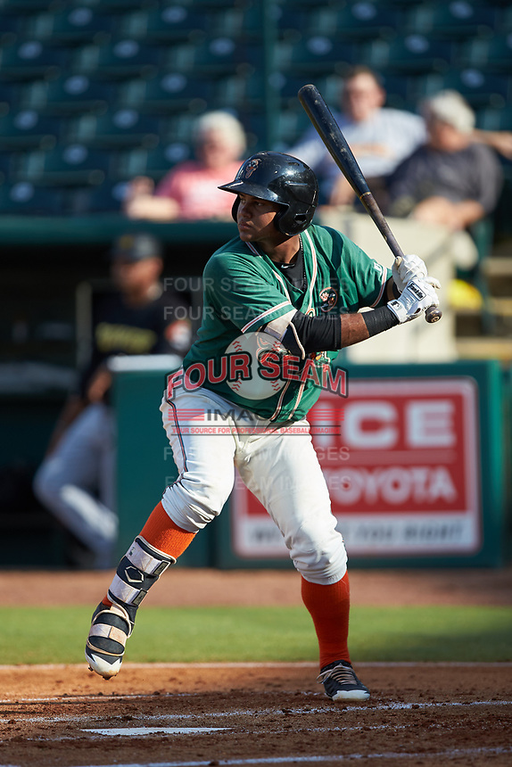 Chris Torres (20) of the Greensboro Grasshoppers at bat against the West Virginia Power at First National Bank Field on August 9, 2018 in Greensboro, North Carolina. The Power defeated the Grasshoppers 5-3 in game one of a double-header. (Brian Westerholt/Four Seam Images)