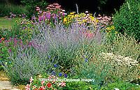 63821-06511 Flower garden with Russian Sage (Perovskia atriplicifolia), Shasta Daisy, Pink Garden Phlox, Red & White Petunias, Blue Larkspur, Liatris, Purple Coneflowers, Brazilian Verbena, Marion Co.  IL