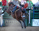 Brian Bain competes in the bareback bronc riding event at the Reno Rodeo in Reno, Nev., on Friday, June 20, 2014.<br />