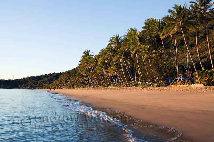 View along beach at dawn.  Ellis Beach, Cairns, Queensland, Australia