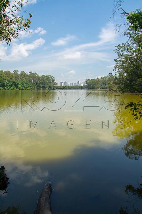 Lago eutrofizado no Parque Ecológico do Tietê - Núcleo Engenheiro Goulart, São Paulo - SP, 12/2016