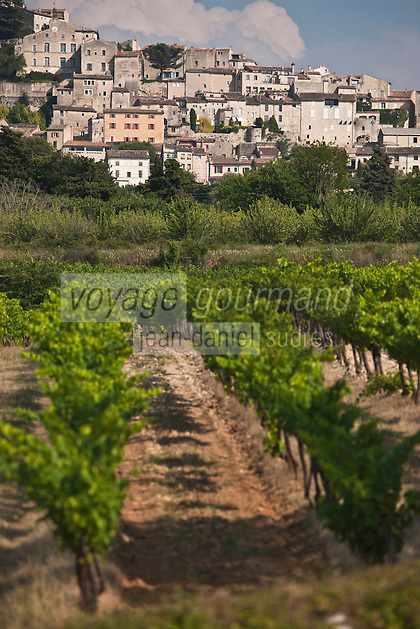 Europe/France/Provence-Alpes-Côte d'Azur/84/Vaucluse/Lubéron/Bonnieux: Le village perché et son vignoble