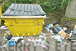 LITTER: Some of the rubbish dumped beside the litter bins and bottle banks located in the car park off Matt Talbot Road in Tralee.   Copyright Kerry's Eye 2008