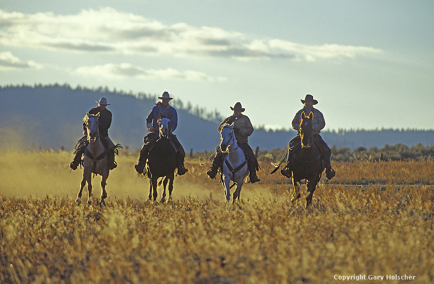 Cowboys on horses running in backlight. Ponderosa Ranch, Seneca, OR.