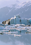 Alsek Glacier, St. Elias Mountains, Alaska