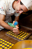 Preparation of hand crafted, artisan chocolate in the laboratory of Andrea Bianchini's 'La Bottega del Cioccolato' popular chocolate boutique in Santa Croce area of Florence, Italy.  Chef preparing saffron cream filled chocolates.