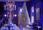 Old Westbury, New York, USA. December 17, 2017. A lighted Christmas tree decorates the formal dining room of Westbury House at Old Westbury Gardens during its Winter Holiday event.