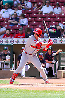 Peoria Chiefs third baseman Nolan Gorman (19) swings at a pitch during a Midwest League game against the Cedar Rapids Kernels on May 26, 2019 at Perfect Game Field in Cedar Rapids, Iowa. Cedar Rapids defeated Peoria 14-1. (Brad Krause/Four Seam Images)