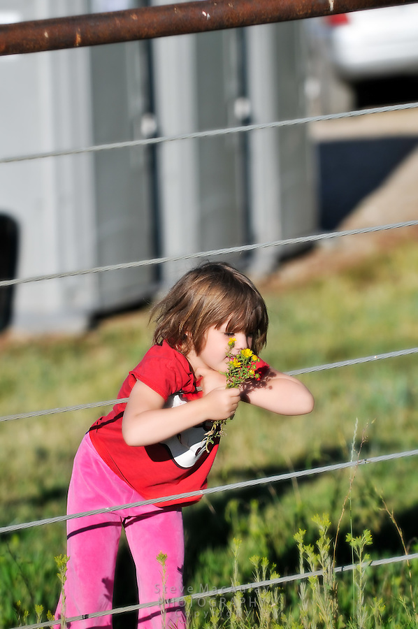 Young girl smelling flowers while leaning on farm ranch  fence, Steamboat Springs, Colorado