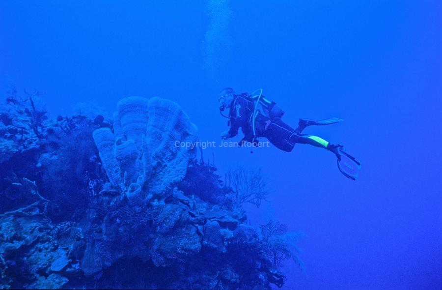 plongée sur le site de maria la Gorda à l'ouest de Cuba