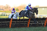 Winner of The Sussex National 5th January Handicap Hurdle, Scrutinise ridden by Page Fuller and trained by Zoe Davidson  during Horse Racing at Plumpton Racecourse on 2nd December 2019