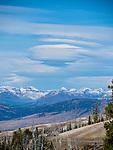 Montana & Yellowstone