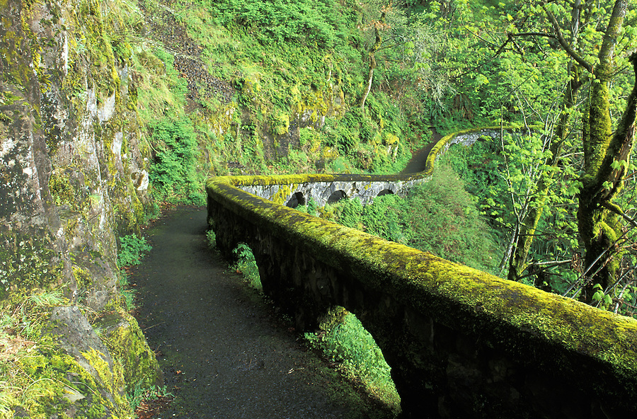 Sheppard's Dell Trail, Sheppards Dell State Park, Columbia River Gorge, Oregon