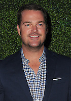 10 August 2016 - West Hollywood, California. Chris O'Donnell. 2016 CBS, CW, Showtime Summer TCA Party held at Pacific Design Center. Photo Credit: Birdie Thompson/AdMedia