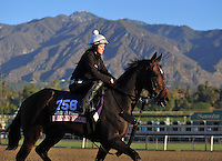 Ria Antonia, trained by Jeremiah Englehart, trains for the Breeders' Cup Juvenile Fillies Turf at Santa Anita Park in Arcadia, California on October 30, 2013.